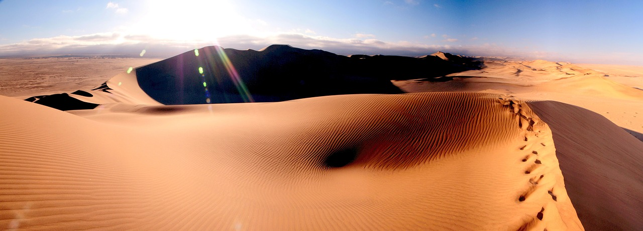 Désert sauvage de la Namibie