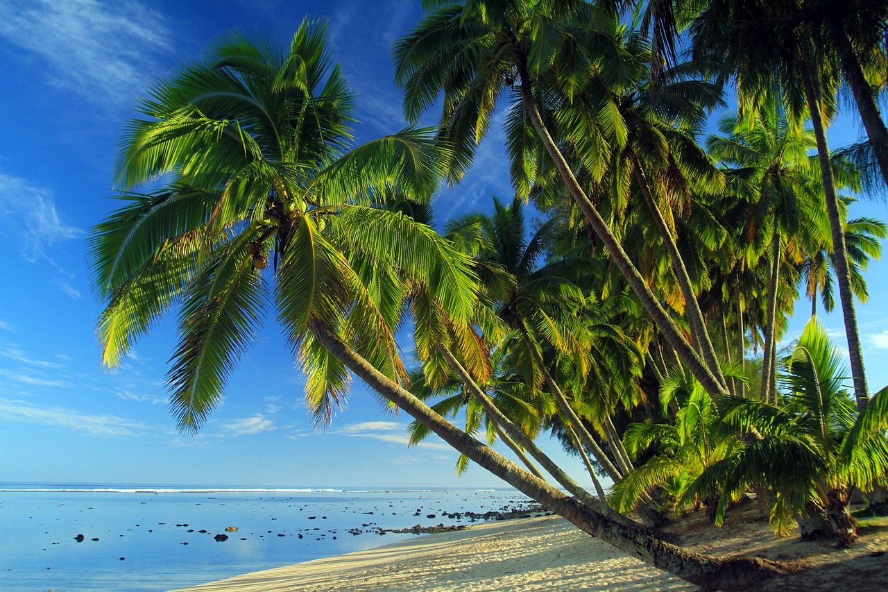 Guide gay de l'île de Cook