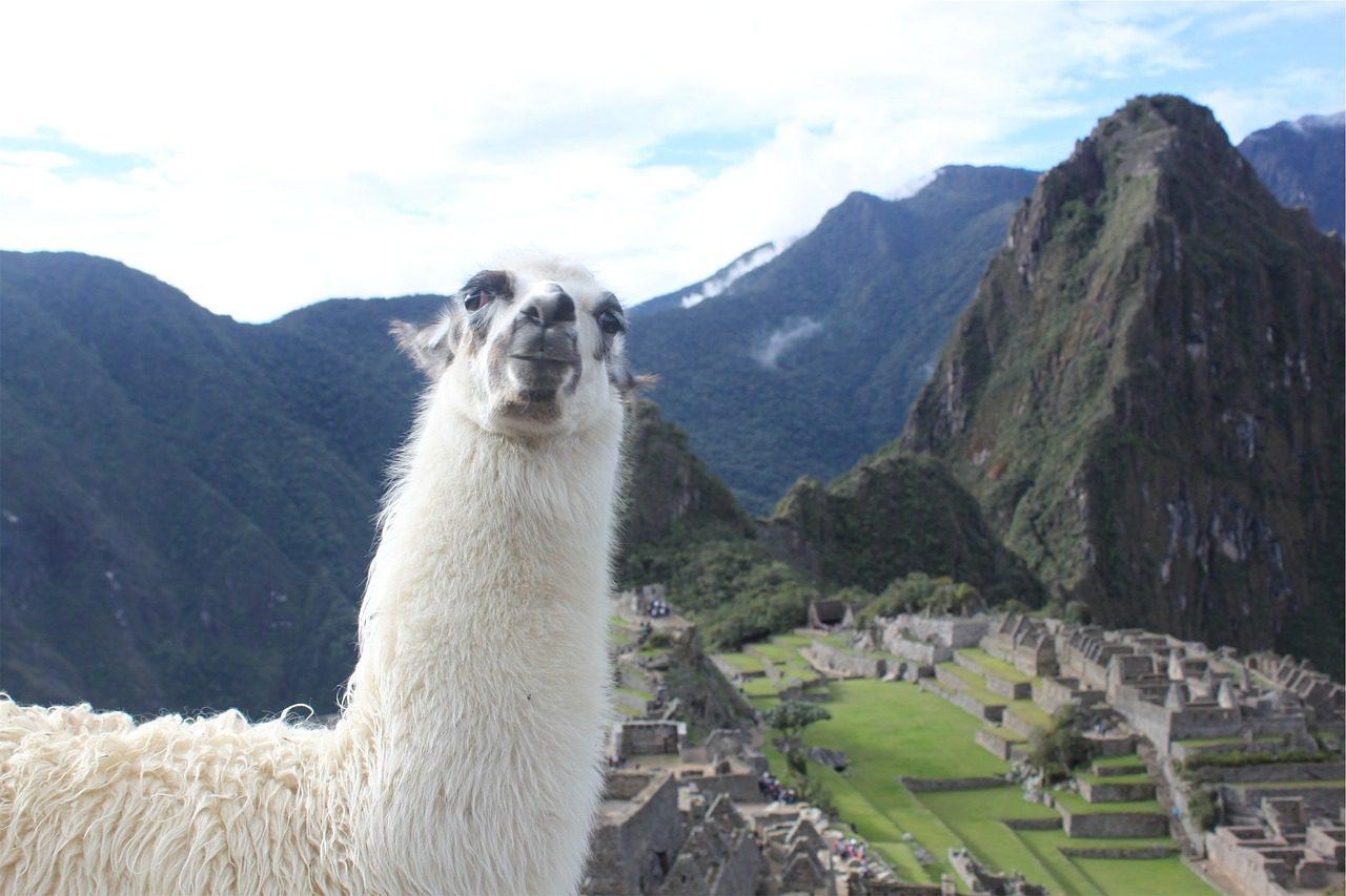 Guide gay sur le Machu Picchu