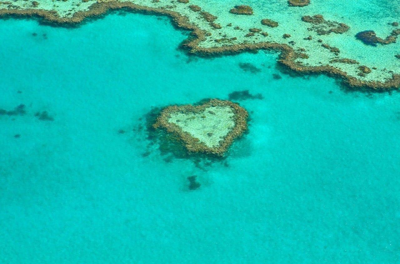 Grande barrière de Corail et la forêt de Daintree, Australie